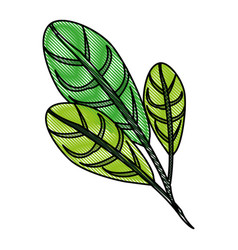 color blurred stripe image green leaves with vector image