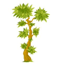 Cartoon Exotic Tree vector image