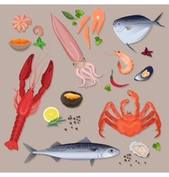 Fresh seafood with spices icons collection vector