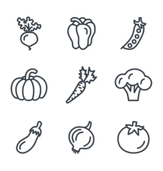 Fruit and vegetables icons linear style vector image vector image