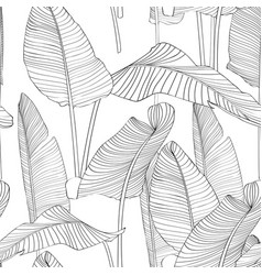seamless pattern with line bananas leaves vector image