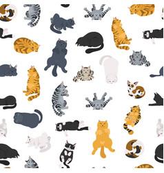 Sleeping cats poses seamless pattern flat vector