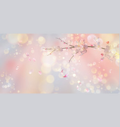 spring blossom background vector image