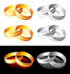 wedding gold and silver rings vector image vector image