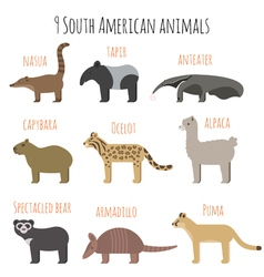 set of South American animals icons vector image vector image