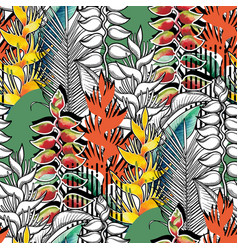 combined heliconia pattern vector image