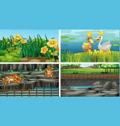 four different scenes nature vector image