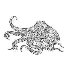 Octopus coloring book for adults vector image