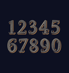 royal vintage numbers in victorian classic style vector image