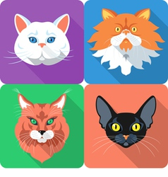 Set icon cats flat design vector