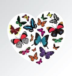 butterfly heart pattern vector image