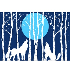 Howling wolf with birch trees vector image