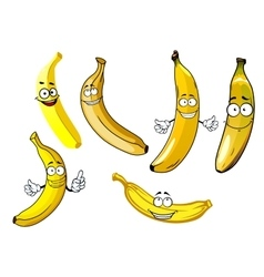 Funny cartoon yellow banana fruits vector image vector image