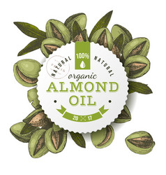 organic almond oil emblem vector image vector image
