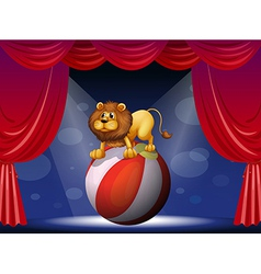 A lion performing at the circus vector