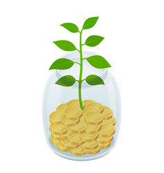 coins in jar with plant - savings concept vector image