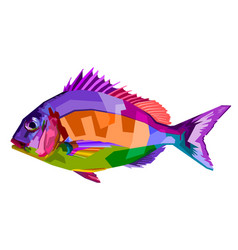 colorful fish on pop art style vector image