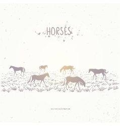 horse in field vector image