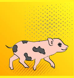 Pop art background pig pet mini pig of a vector