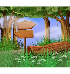 Scene with wooden signs in woods vector