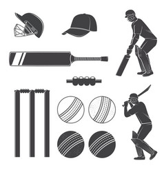 set cricket equipment silhouette icons vector image