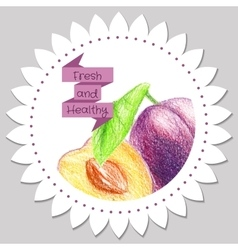 Sticker template Healthy and fresh plum vector image
