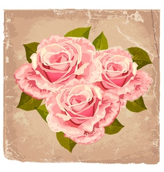 rose grunge vector image vector image