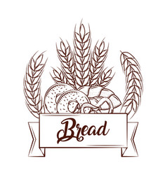 Bread donuts pretzel wheat bake tasty banner vector