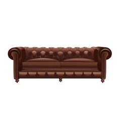 Brown leather chester sofa vector