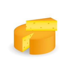 cheese wheel and triangular slice of cheese vector image