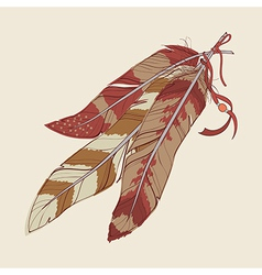 decorative feathers vector image