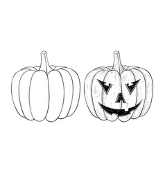 halloween pumpkin outline hand drawn sketch vector image