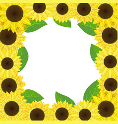 sunflowerssunflowers vector image vector image