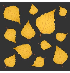 Autumn background of yellow gold birch leaves vector image