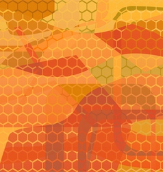 abstract background - honey vector image