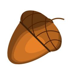 Acorn icon cartoon thanksgiving day vector