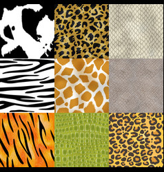 animal skin pattern seamless animalistic vector image
