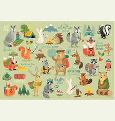 Camping animals hand drawn style calligraphy and vector