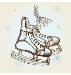 Drawing of skates vector image