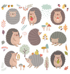 hedgehog set hand drawn style cute woodland vector image