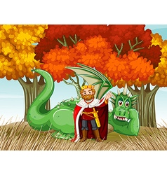 king and dragon in field vector image