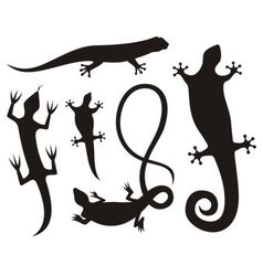 lizard silhouettes vector image