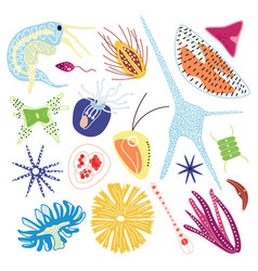 Microorganisms marine plankton set flat vector