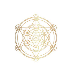 sucred geometry spirituality vector image