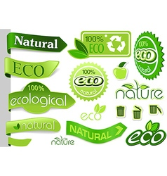 Eco Banners and Icons vector image