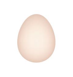 Animal egg realistic style art vector
