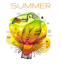 hello summer poster with hand drawn toucan bird vector image