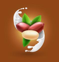 peanut nuts in milk splash realistic vector image