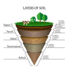 soil2 vector image