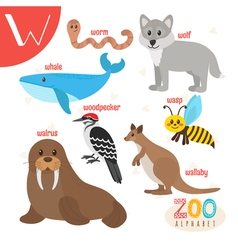 Letter W Cute animals Funny cartoon animals in vector image